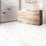 cerajot ceramic hall tiles design (115)