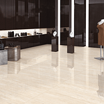 cerajot ceramic hall tiles design (91)